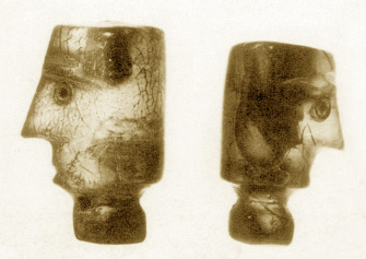 amber heads, hairless, with prominent noses